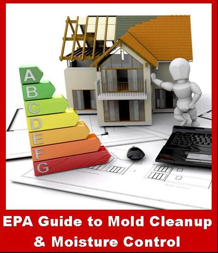 EPA Guide to Mold Cleanup